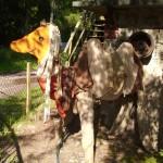 Abenteuerland Jagdshof